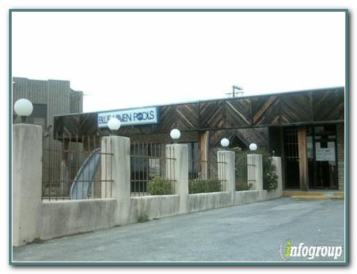Blue Haven Pools Spas San Antonio Tx