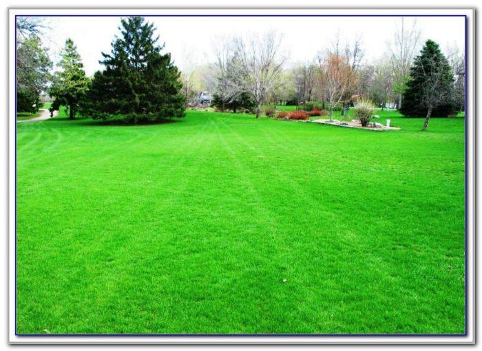 Craigslist spokane lawn and garden garden home - Craigslist farm and garden reading pa ...