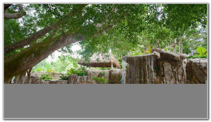 Marie Selby Botanical Gardens Florida