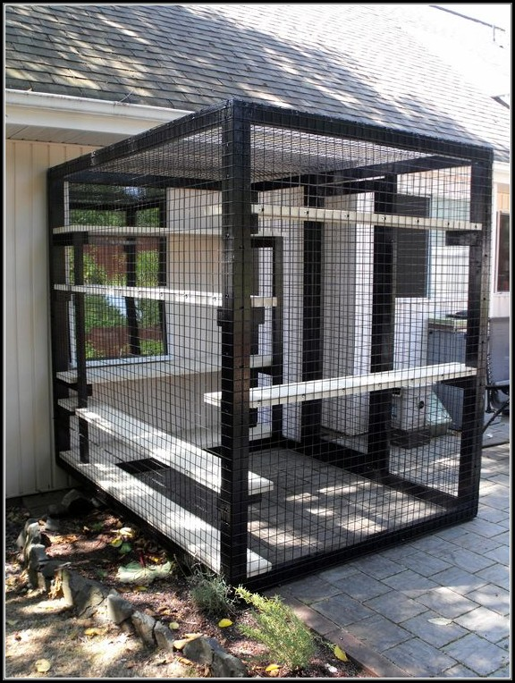 Outdoor Patio Cat Enclosures