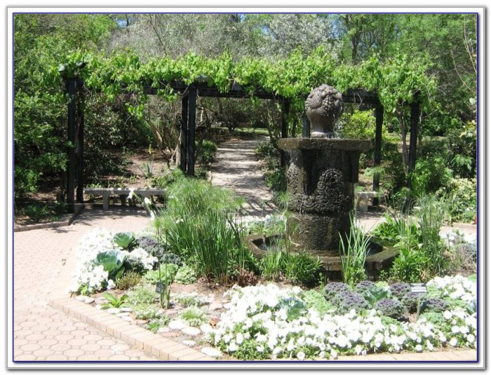 San Antonio Botanical Garden Events