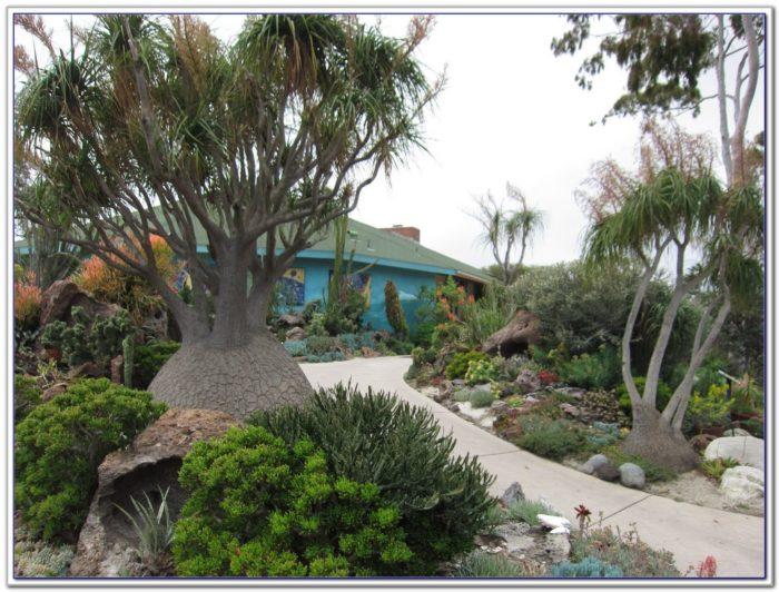 San Diego Botanic Garden Hours