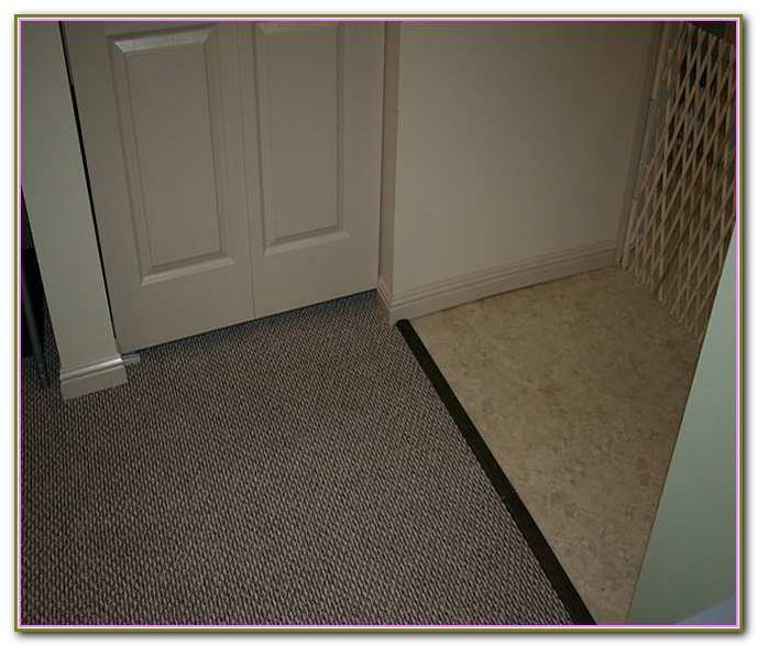 Carpet To Tile Transition Molding