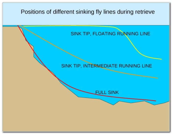 Floating Line Vs Sinking Line Fly Fishing