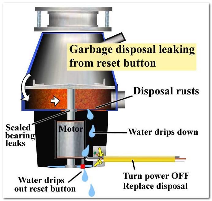 Dish Towel Stuck In Garbage Disposal: Badger 5 Insinkerator Garbage Disposal