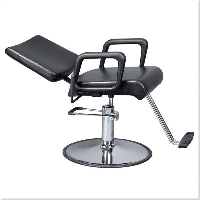 All Purpose Salon Chair Free Shipping