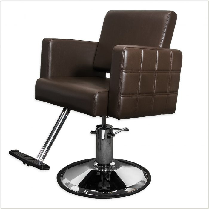 Brown Salon Styling Chairs