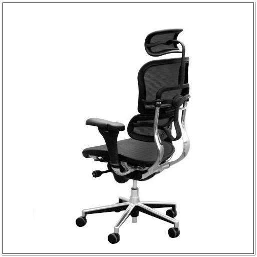 Ergohuman V1 Mesh Office Chair With Headrest