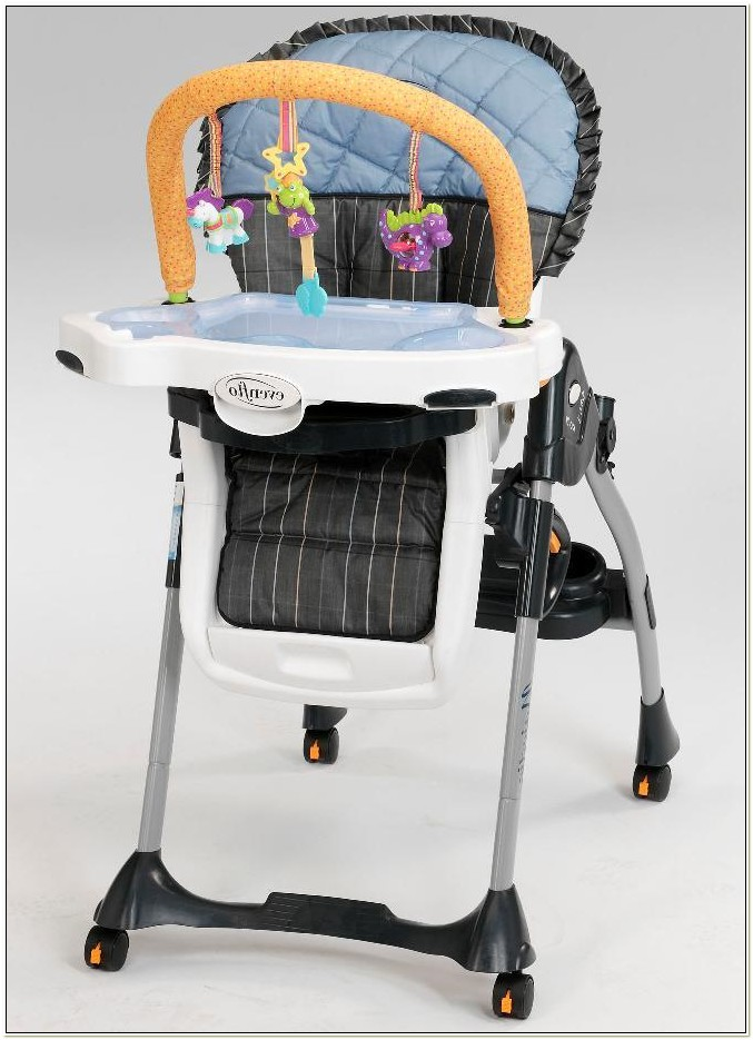 Evenflo High Chair Expressions Chairs Home Decorating