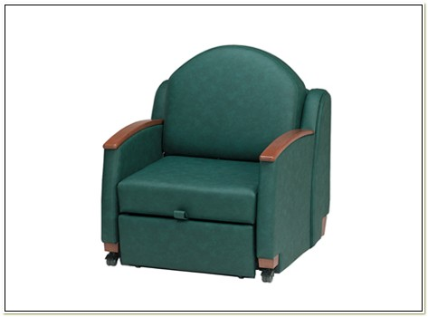 Lazy Boy Daphne Sleeper Chair Chairs Home Decorating