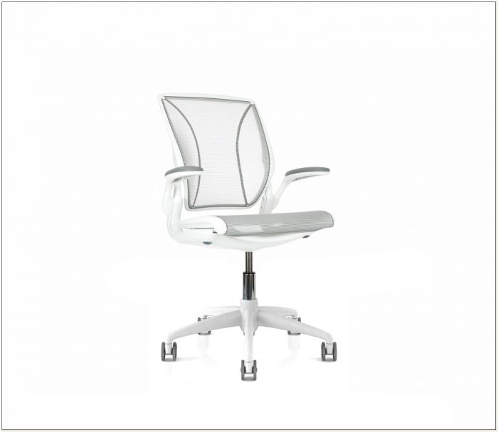 Humanscale Diffrient World Chair Uk