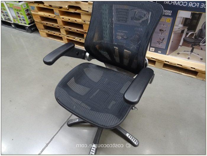Metrex Mesh Office Chair Weight Limit