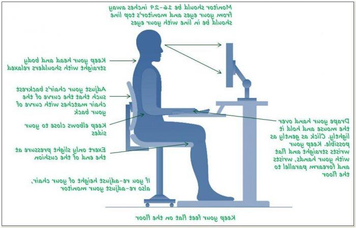 Optimal Posture Office Chair