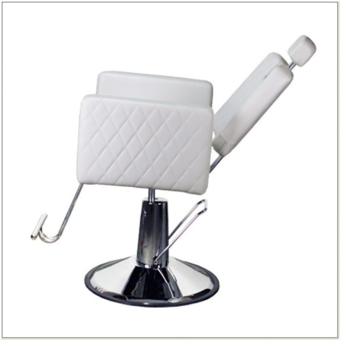 White All Purpose Salon Chair