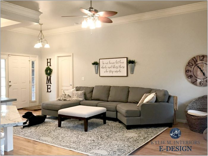 Agreeable Gray Living Room