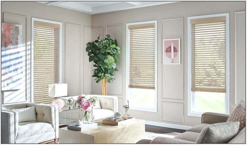 Best Window Blinds For Living Room