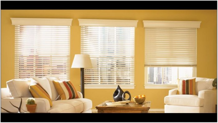 Blinds For A Large Living Room Window