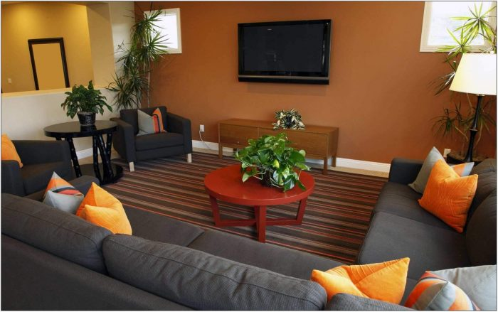 Burnt Orange And Brown Living Room Ideas