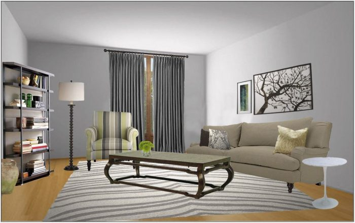 Gray Color Living Room Ideas
