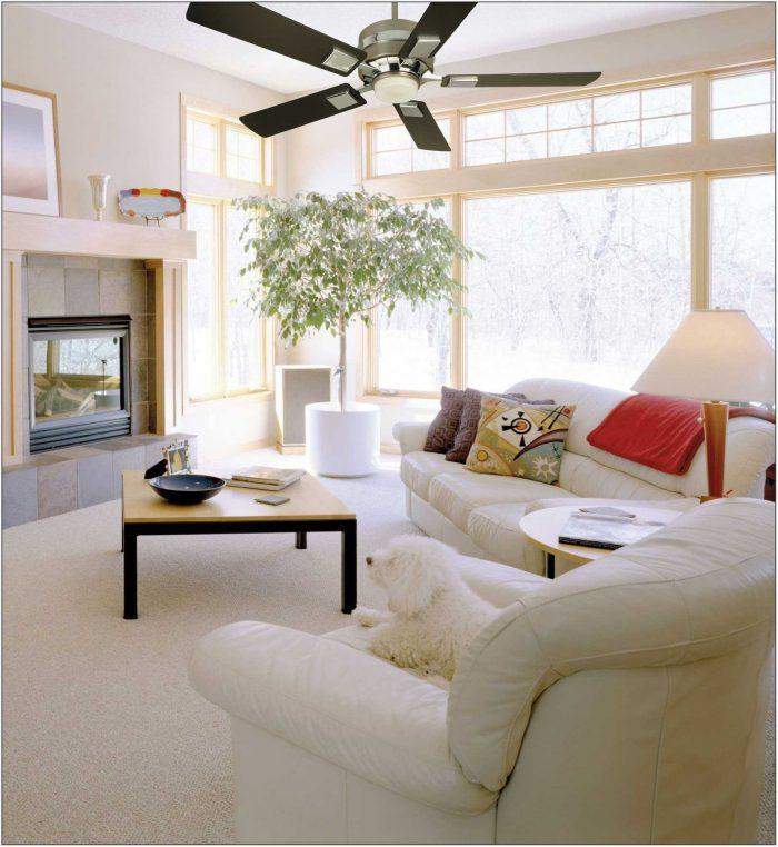 Living Room Fan Ideas